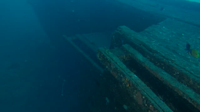 woody ship wrecked undersea - кораблекрушение стоковые видео и кадры b-roll