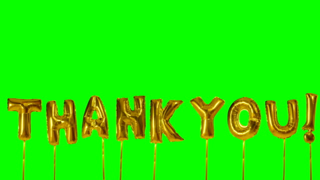 Word thank you from helium golden balloon letters floating on green screen Word thank you from helium golden balloon letters floating on green screen thank you stock videos & royalty-free footage