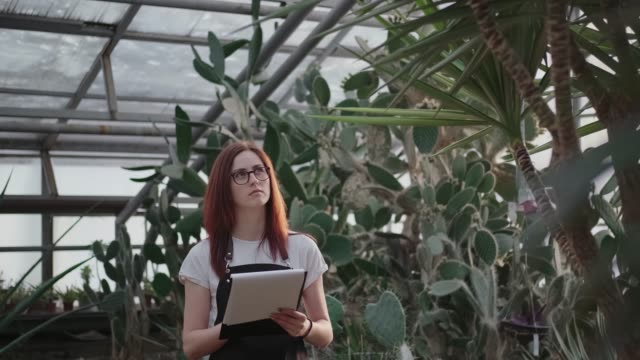 Work in a greenhouse: woman takes notes in a tablet for papers