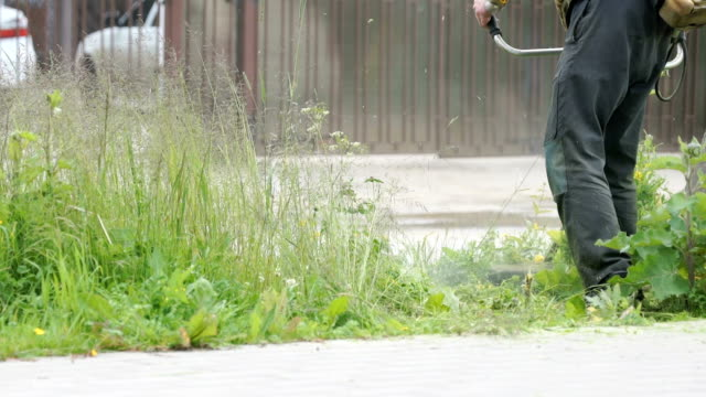 Worker cuts the grass with lawn string trimmer video