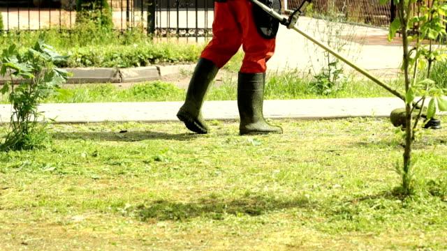 Worker cutting a grass using a trimmer outdoors video