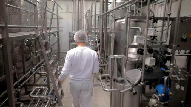 gıda fabrikası işçisi - gıda ve i̇çecek sanayi stok videoları ve detay görüntü çekimi