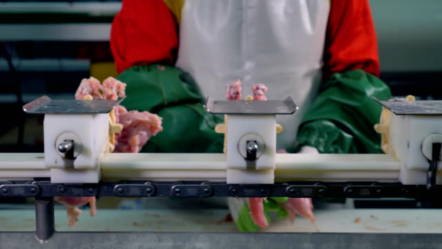 A worker manually removes chicken breast fillet from the bones. video