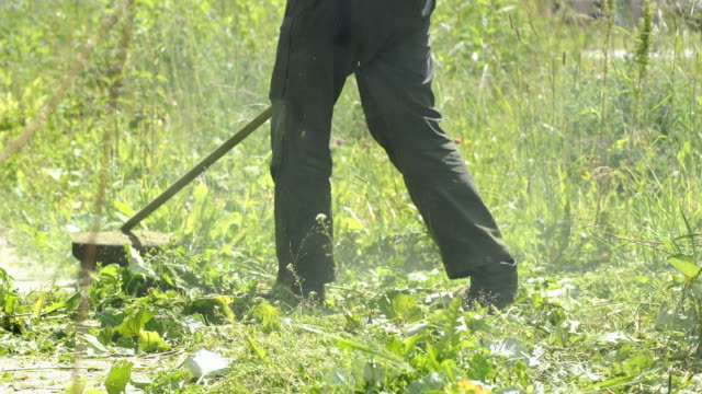 Worker mowing a grass using a trimmer outdoors video