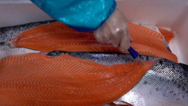 Worker puts salmon fillets in a box on the fish factory video