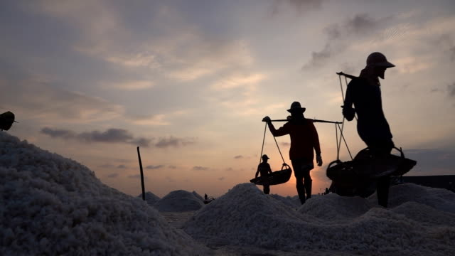 Worker working at saline field at sunset, Slow Motion.