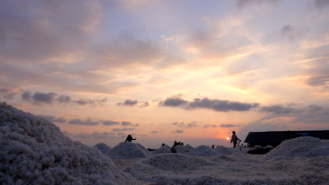 Worker working at saline field at sunset