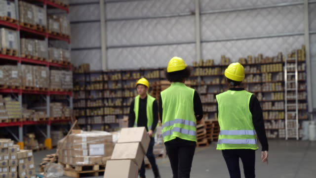 Workers discussing while colleague pushing cart Female workers discussing while male colleague pushing cart. Employees are wearing reflective clothing in warehouse. They are working in large storage room. woman pushing cart stock videos & royalty-free footage