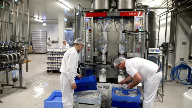 vídeos de stock e filmes b-roll de workers in the dairy.hands receive ready bags with milk - engradado
