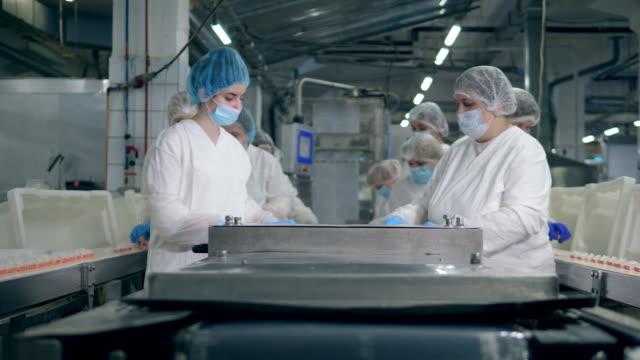 konveyör yakın bir gıda fabrikasında kadın uzmanları çalışma süreci. - gıda ve i̇çecek sanayi stok videoları ve detay görüntü çekimi