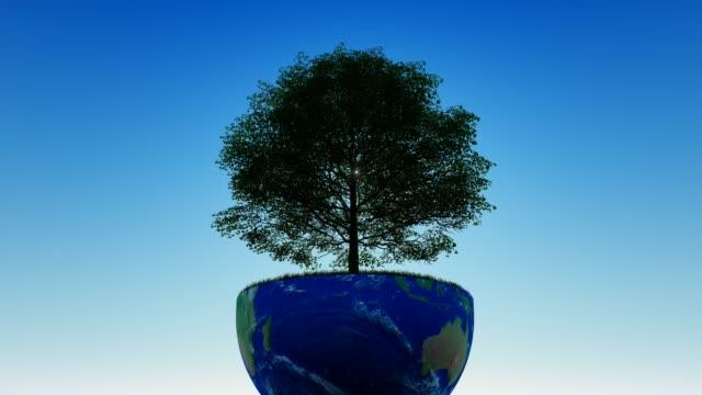 Journée mondiale de la foresterie - Vidéo