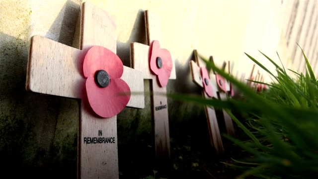 vidéos et rushes de world war one coquelicots: cimetière militaire britannique - première guerre mondiale