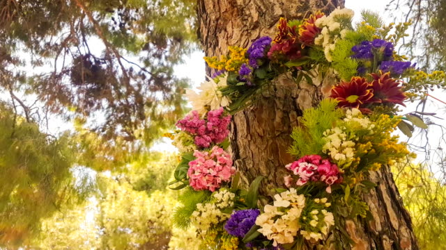 Wreath of flowers hanging from a tree on 1st of May labour day in Greece. video