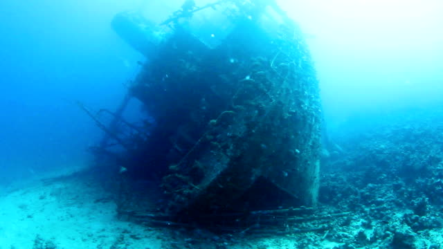 Best Sunken Ship Stock Videos and Royalty-Free Footage - iStock