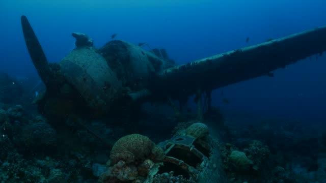 vídeos y material grabado en eventos de stock de naufragio del hidroavión de marina de guerra japonesa - micronesia