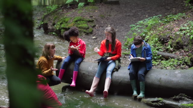 writing down their findings - viaggio d'istruzione video stock e b–roll
