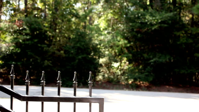 Wrought iron gate closing to the right. Home driveway. video