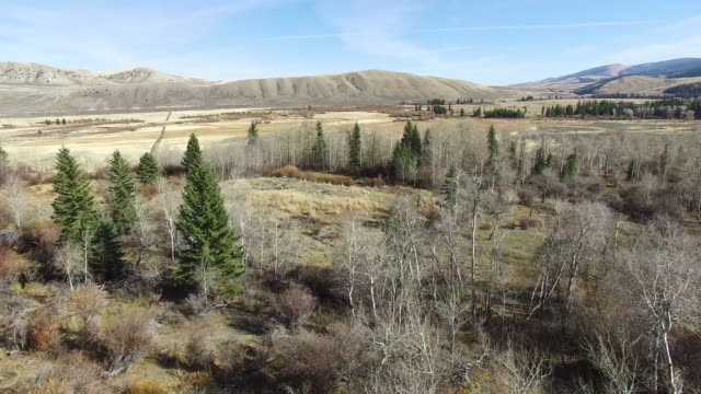Wyoming Aerial 008 video