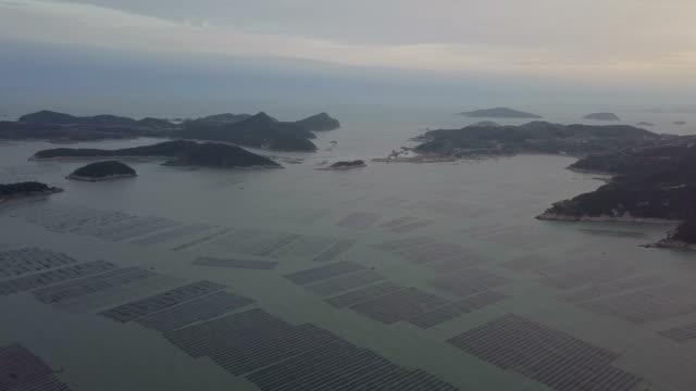 Xiapu beach landscape at dusk Xiapu beach landscape at dusk kelp stock videos & royalty-free footage