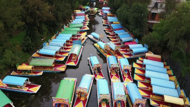 xochimilco canals - город мехико стоковые видео и кадры b-roll