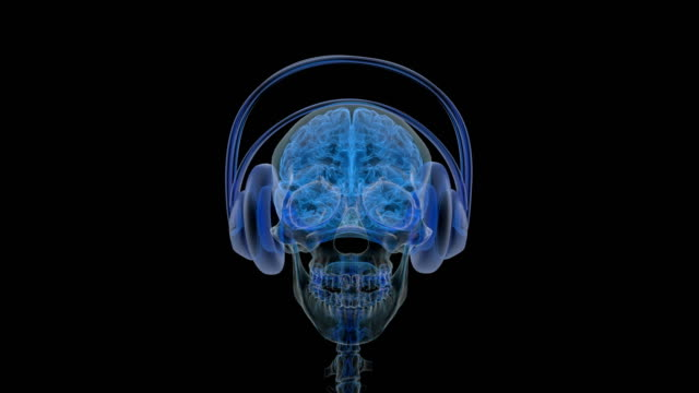 vídeos de stock e filmes b-roll de x-ray of head with headphones on. - active brain