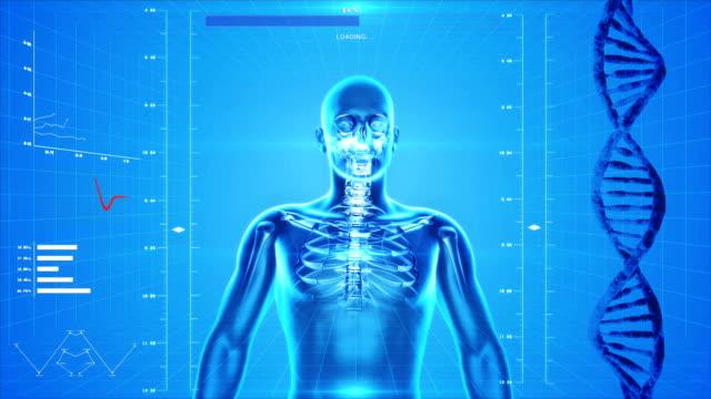 x 線の骸骨で、ハイテクの背景 - 人の筋肉点の映像素材/bロール