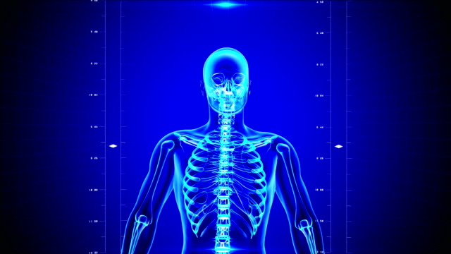 X-Ray of Human skeleton on high tech background video