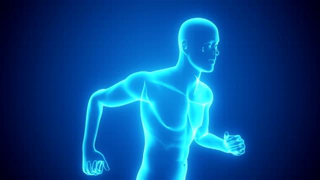 X-ray von Running Man | Endlos wiederholbar – Video