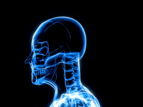 X-Ray Scan of Human video