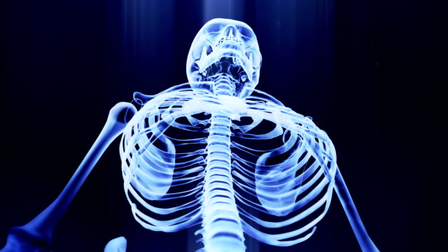 x-ray skeleton looping animation 1080 - i̇nsan i̇skeleti stok videoları ve detay görüntü çekimi