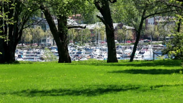 yacht marina, spring landscape - getty filmów i materiałów b-roll
