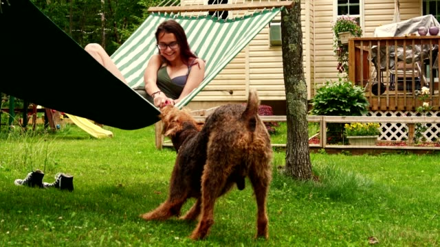 vídeos de stock e filmes b-roll de 15 years old teenager girl lying in the hammock and playing with her airedail terrier dog. - dog food
