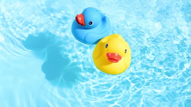 vídeos de stock e filmes b-roll de a yellow and a blue rubber duck can be relaxed and casually drifted back and forth on the sparkling and crystal-clear water of a pool - brinquedos na piscina