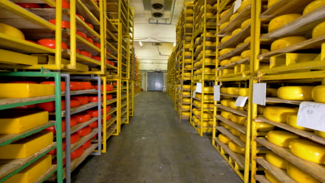 Yellow and orange cheese wheels on double-sided racks at a warehouse. 4K. video
