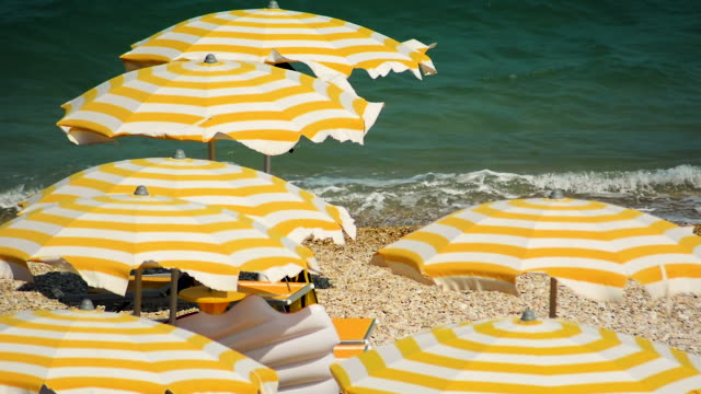 Yellow and white striped umbrellas open in a pebbly beach during a windy summer day