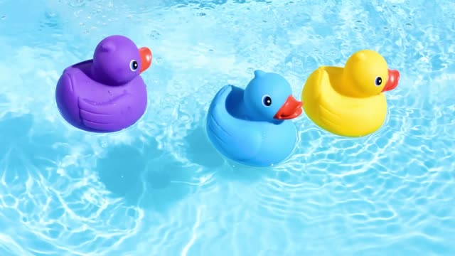 vídeos de stock e filmes b-roll de a yellow, blue and purple rubber duck can be relaxed and casually drifted on the sparkling and crystal-clear water of a pool - três objetos