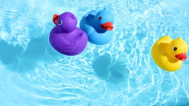 A yellow, blue and purple rubber duck swim through the picture from left to right, floating relaxed and casually on the sparkling and crystal-clear water of a pool