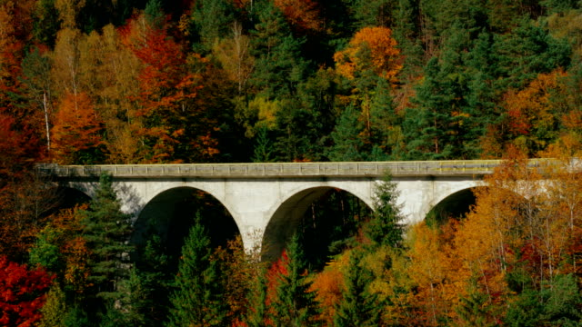 Yellow car moving on arch bridge through autumn forest video