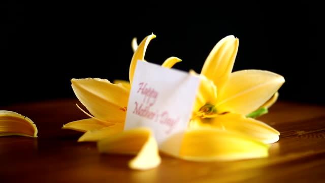 stockvideo's en b-roll-footage met gele lelie bloemen en knoppen - plantdeel