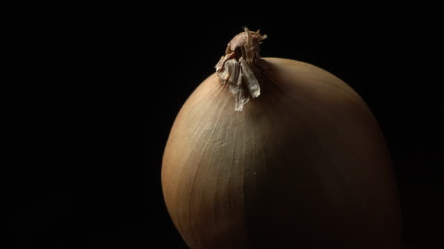 Yellow onion  in rotation Yellow onion in rotation on a black background. with place for copy text onion stock videos & royalty-free footage