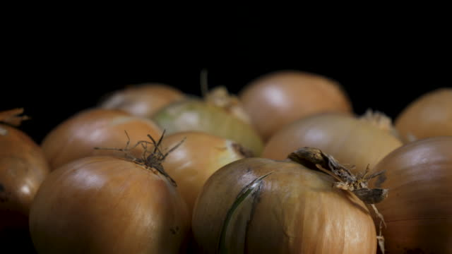 yellow onions in close up rotates against black background - aglio cipolla isolated video stock e b–roll
