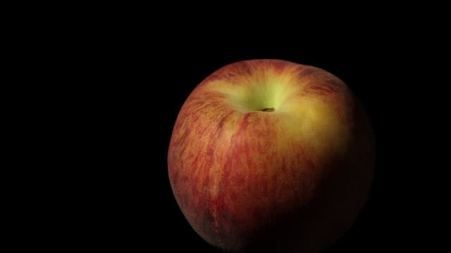 yellow peach rotating on black background with soft light yellow peach rotating on black background with soft light side lit stock videos & royalty-free footage