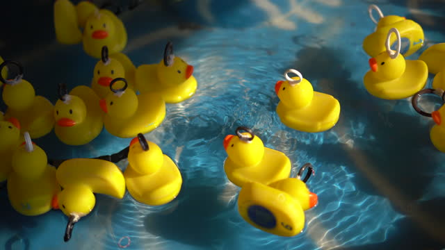 Yellow plastic ducks floating in pool in amusement park