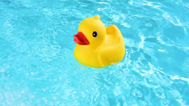 vídeos de stock e filmes b-roll de a yellow rubber duck can drift relaxed on the sparkling and crystal-clear water of a pool in the summer light - brinquedos na piscina