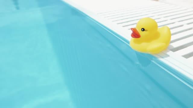 vídeos de stock e filmes b-roll de amarelo pato de borracha em uma piscina flutuante - brinquedos na piscina