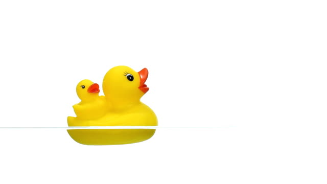 Yellow Rubber Duck Floating on Water