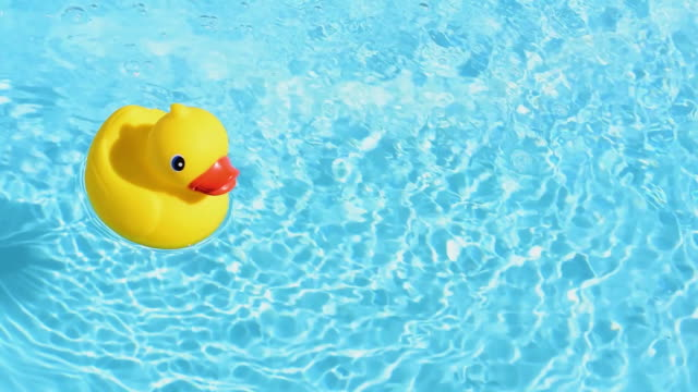 vídeos de stock e filmes b-roll de a yellow rubber duck floating relaxed and casually on the sparkling and crystal-clear water of a pool in summer light - brinquedos na piscina