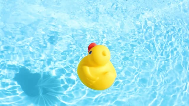 A yellow rubber duck floating relaxed and casually on the sparkling and crystal-clear water of a pool in summer light