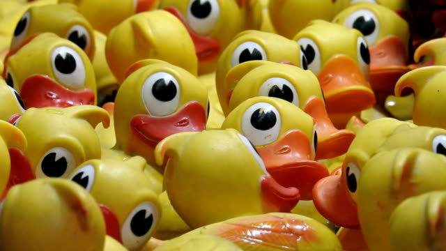 Yellow rubber ducks floating