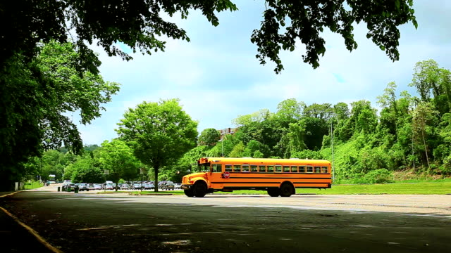Yellow school bus on the parking Yellow school bus on the parking school buses stock videos & royalty-free footage